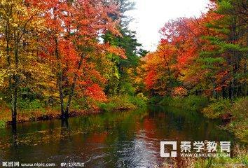 作文素材摘抄——描述秋天的段落,词句!