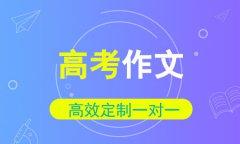 秦学教育高考作文一对一同步辅导