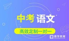 秦学教育-中考语文备考冲刺班