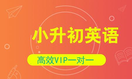 秦学教育小学升学英语1对1vip同步辅导 英语冲刺辅导