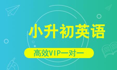 秦学教育小学升学英语同步提高vip课程