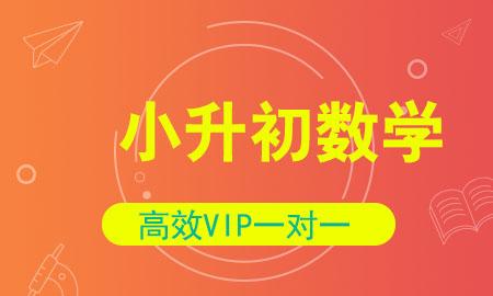 秦学教育小学升学数学1对1vip同步辅导|数学冲刺辅导