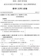 武汉市2018-2019学年度部分学校新高三起点调研测试文科数学试卷及答案
