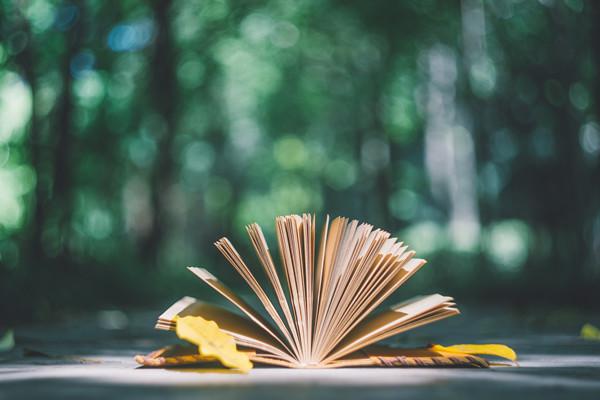 高三语文阅读理解课程辅导班介绍,阅读理解提升技巧分享!