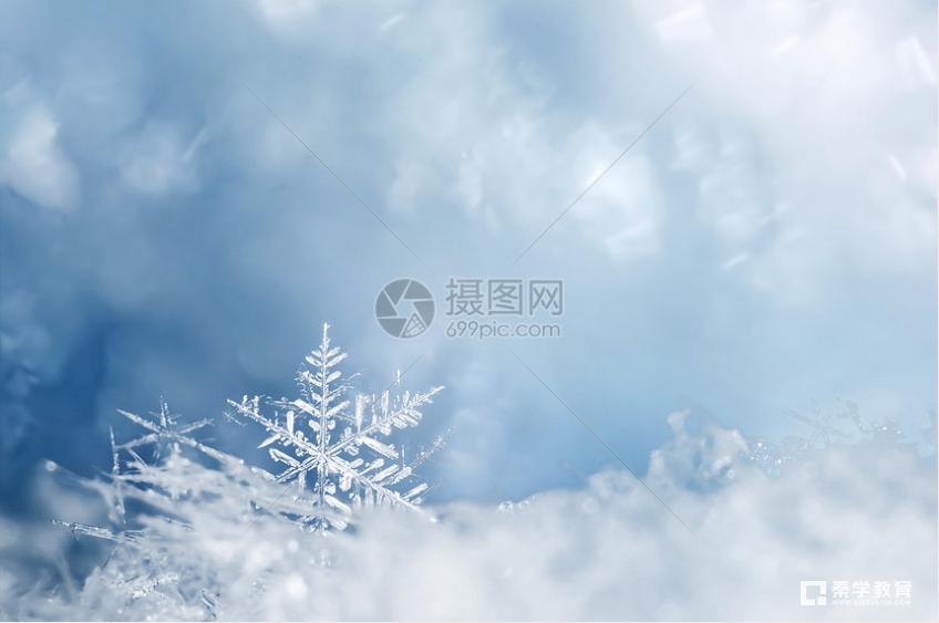 描写雪景的唯美诗句有哪些?2021成都语文中高考作文素材积累