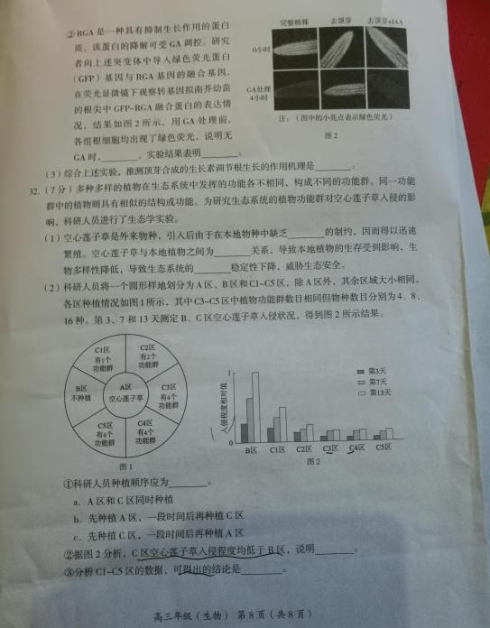 北京市海淀区2019高三期末考试生物试题,大家快来参考!