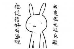 对于初中语文的学习方法是什么?