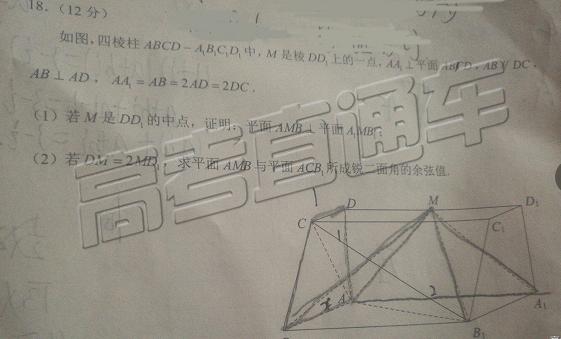 2019年昆明二统理科数学试题和答案