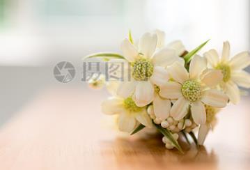 2019郑州市区民办小升初细则发布!6月13日开始报名!
