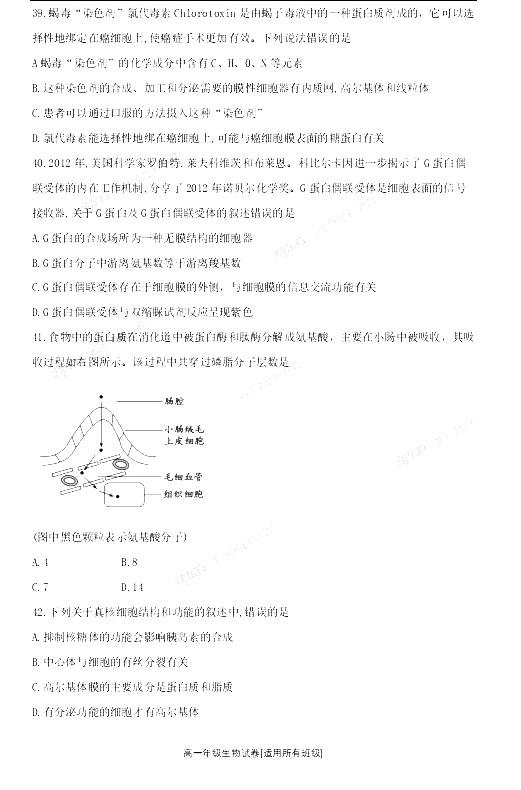 江苏南京师大附中2019-2020年上学期高一期中考试生物试卷及答案(免费)
