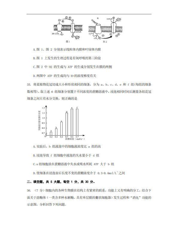 南京师大附中高一2019-2020年上学期期末生物试卷,秦学教育倾情整理